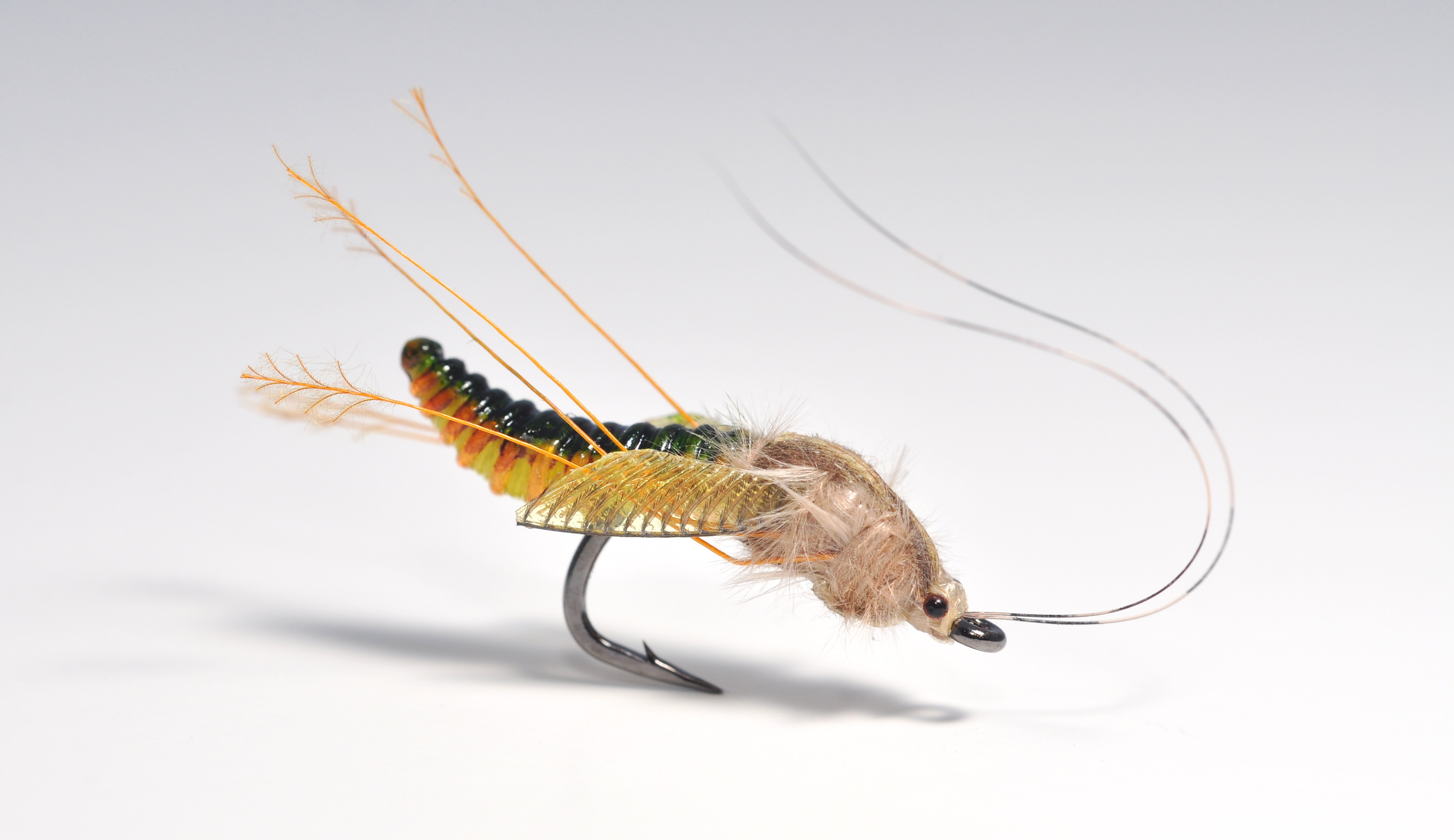 Fly tying pictures posters news and videos on your for Fly fishing tying