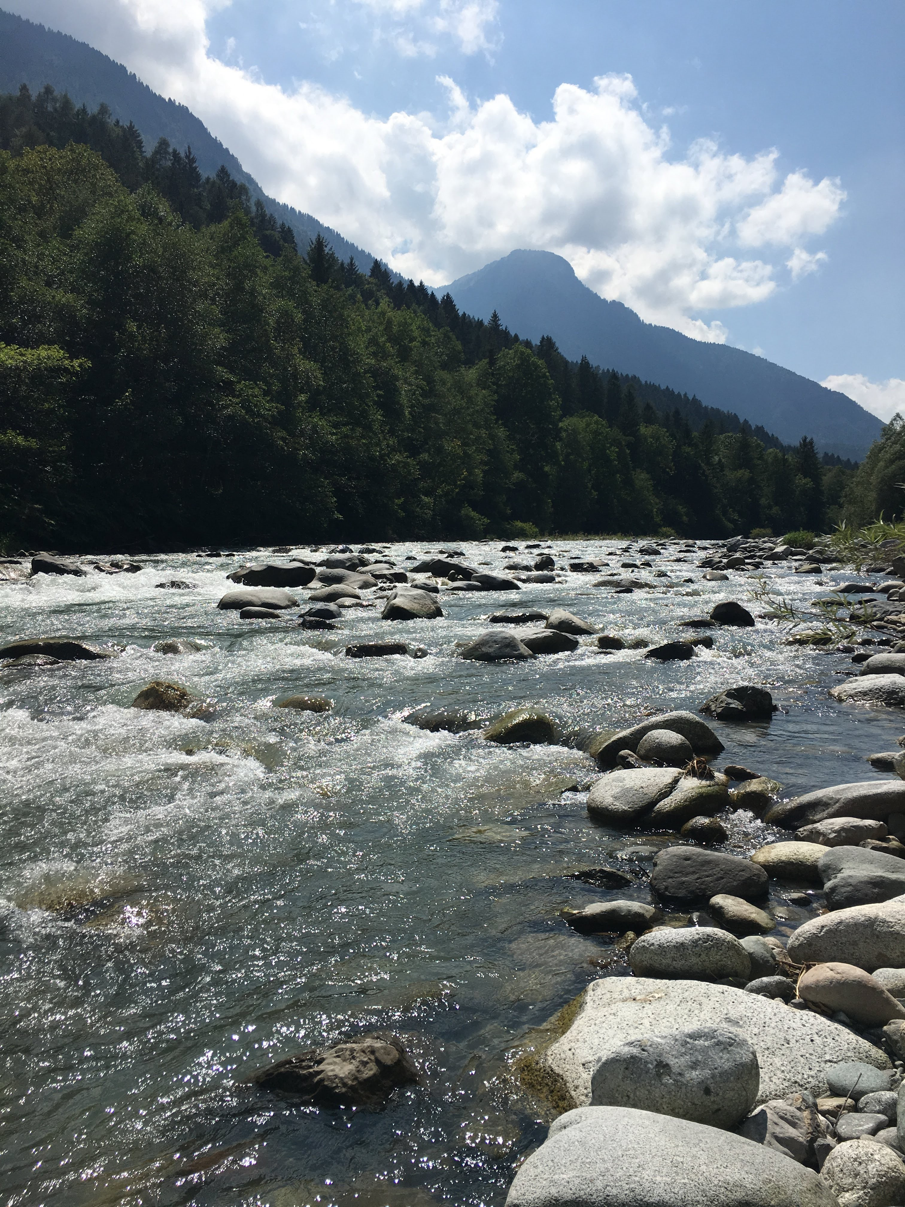Fly Fishing in Trentino