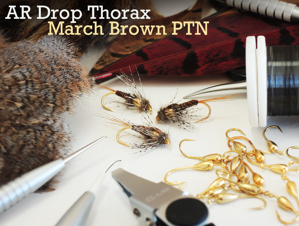 AR Drop Thorax March Brown PTN