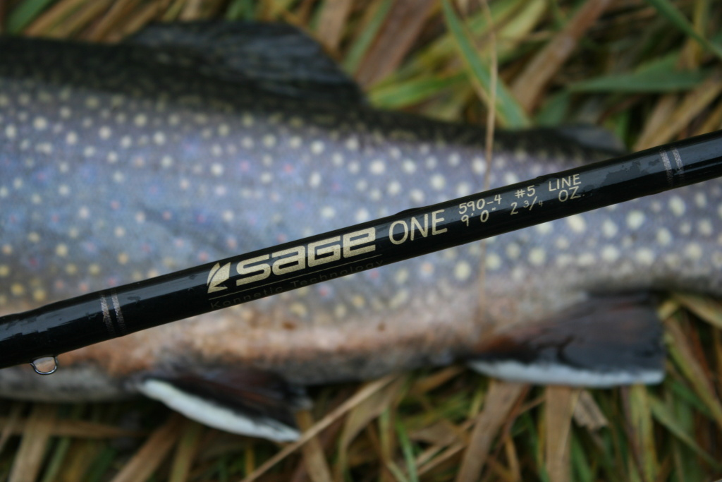 5 or 6wt fly rod is fully sufficient in case of good conditions without headwind.