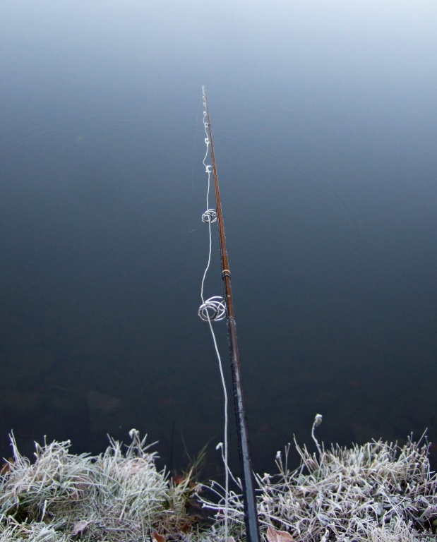 Frosty mornigs are magical, but we do not always appreciate it! Mainly during fishing with frozen fly gear...