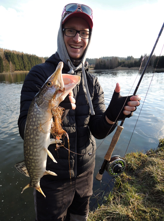 Small pike caught by my friend under the shore on a big golden pike tube streamer.