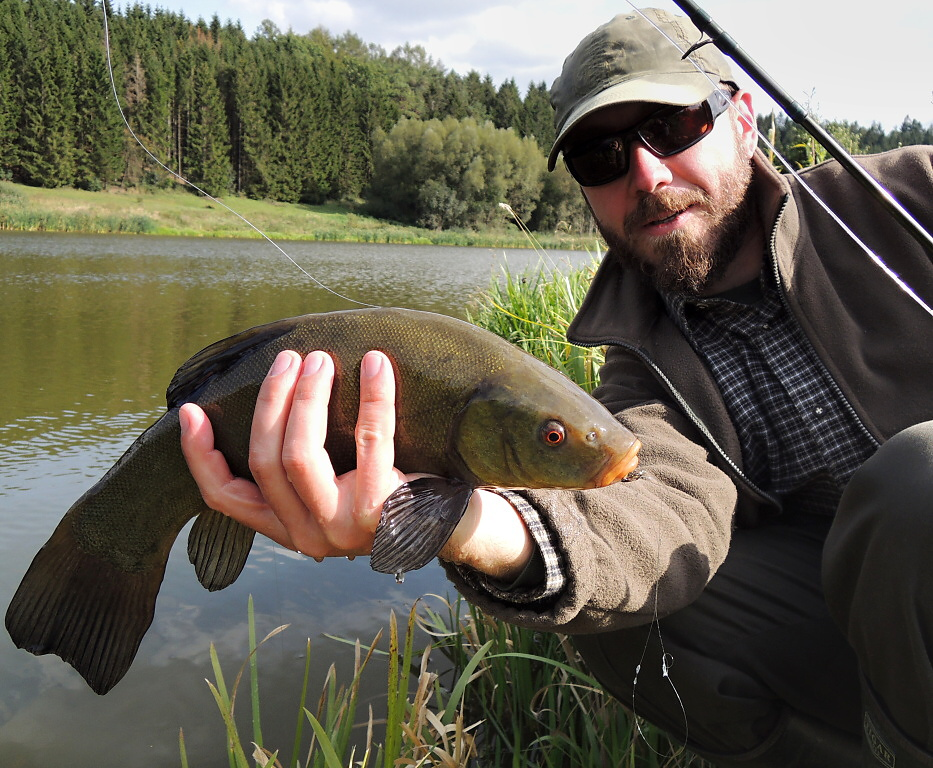 The method at the moment did not bear fruit in the form of some nice trout, but was not also completely unsuccessful! Evidence of this is a nice old tench, which is - in addition to pike, zander, perch and carp - also quite abundant in trout small waters.
