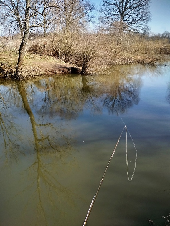 I fish the classic wet method with a floating line and two lighter tungsten nymphs on a thin leader. I like to use a short fly rod of in category # 2, with which I get well and cast in every worse terrain!