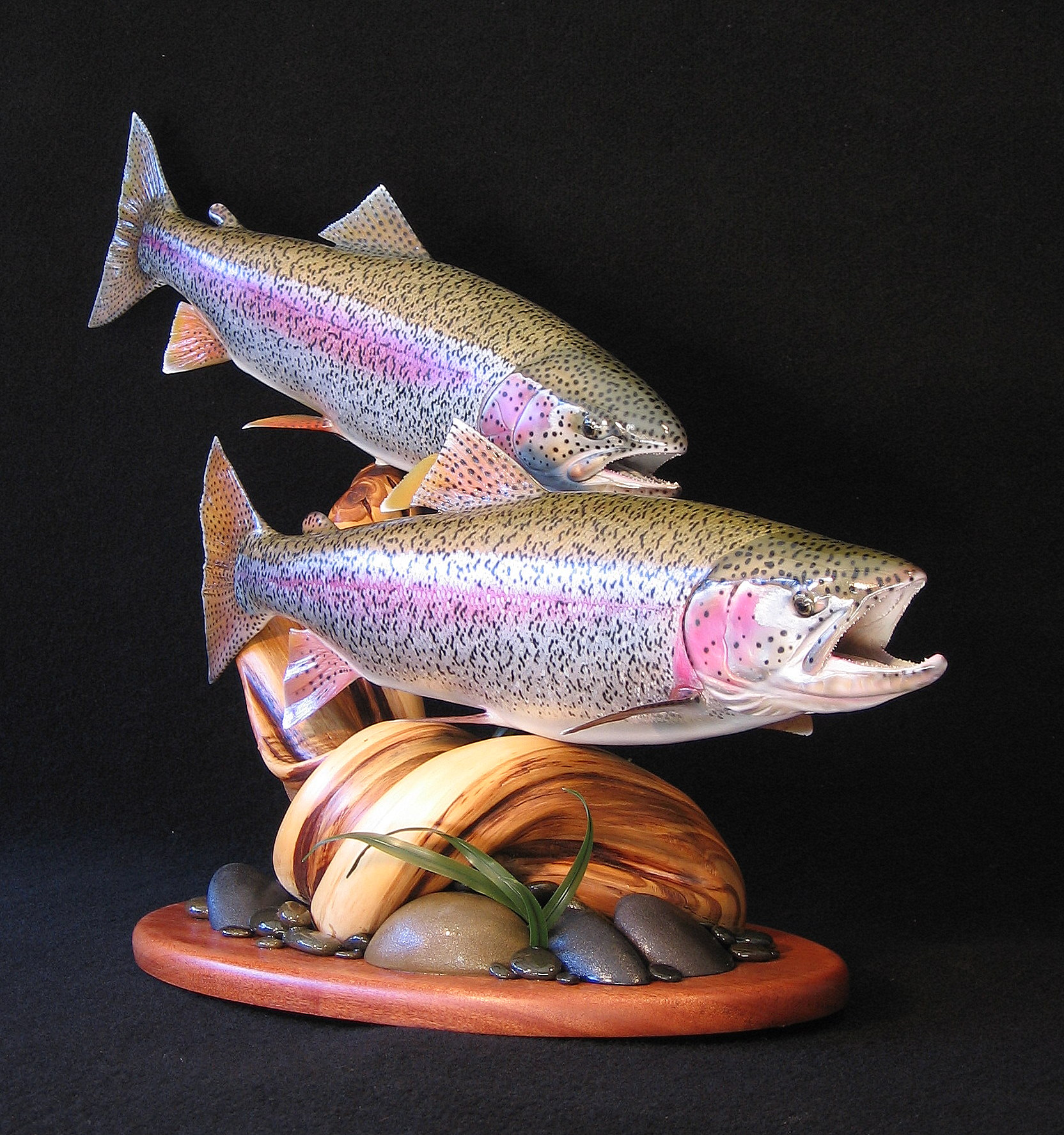Double Alaskan Rainbow Trout Replicas featured on Juniper Base