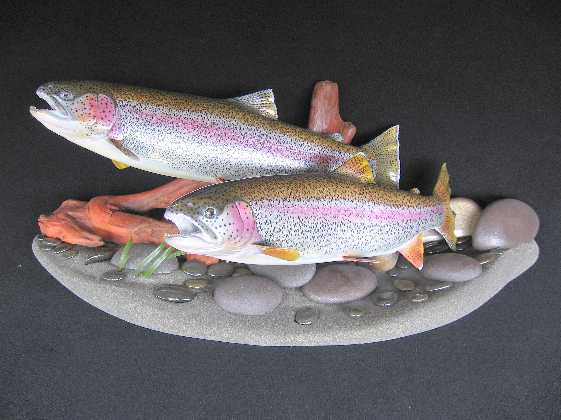 Double Alaskan Rainbows featured on streambed sandbar wall display