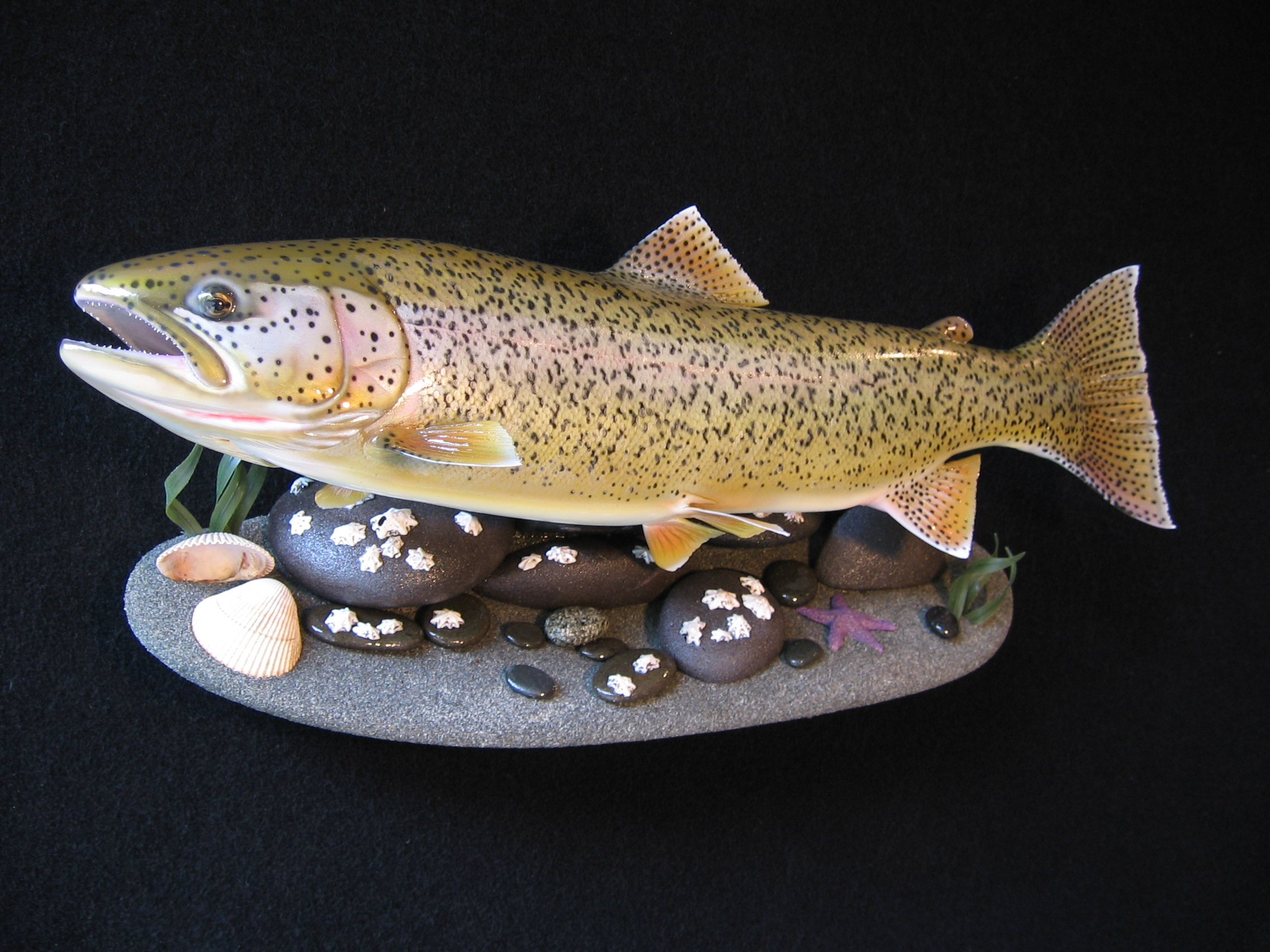 SeaRun Cutthroat Fish Replica on Beach Wall Mount Display