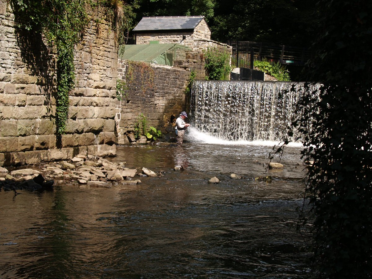 Pool under the weir