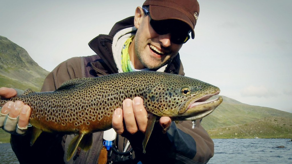Nice Brown trout from a lake in Lapland Sweden