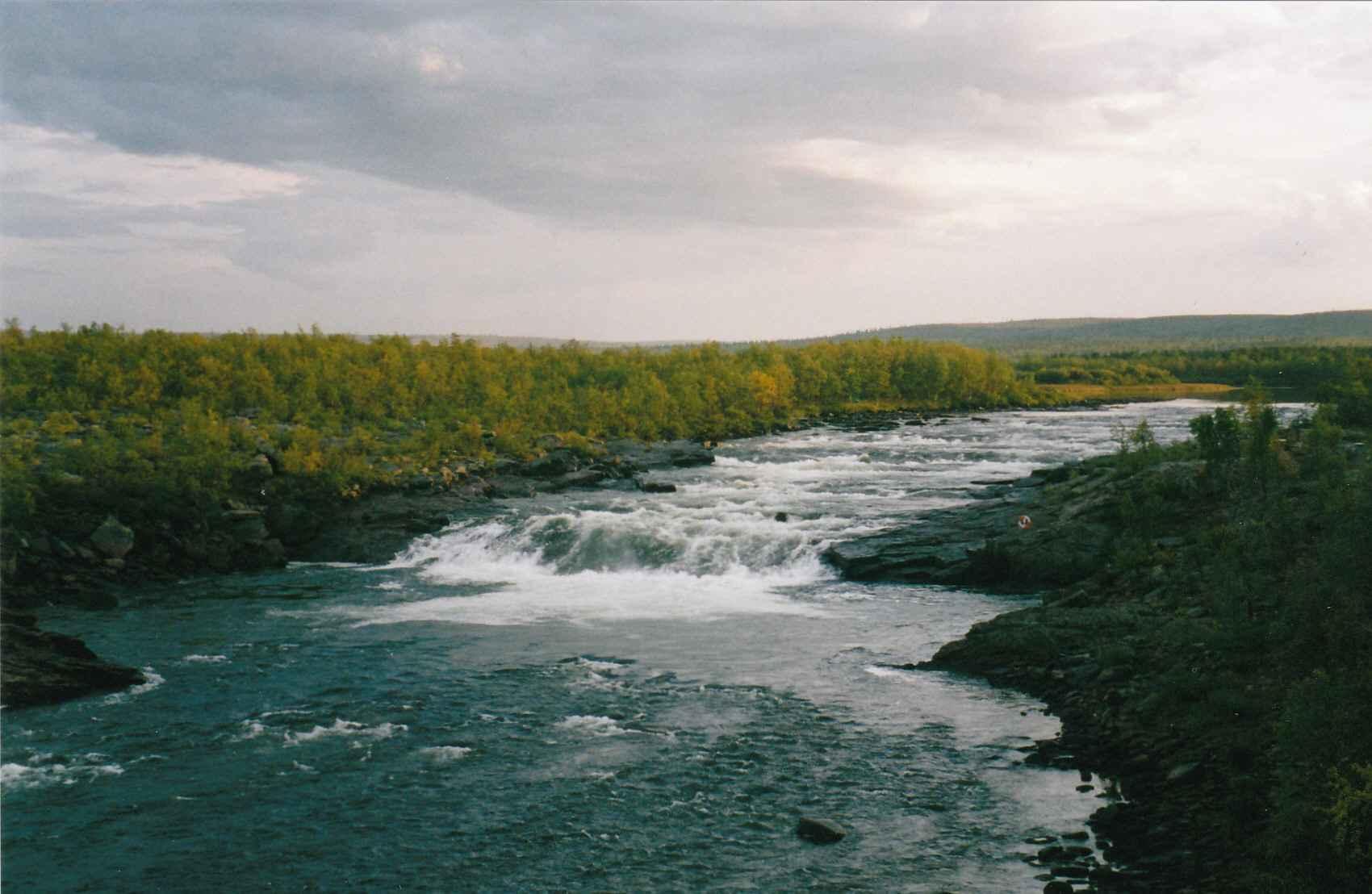 Kaitum River Czechnymph Com